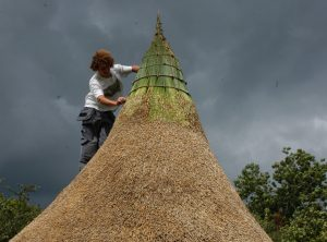Thatching with reeds