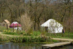 Welsh yurts